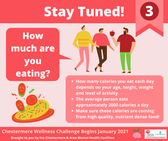 Healthy Eating - Am I eating too much?