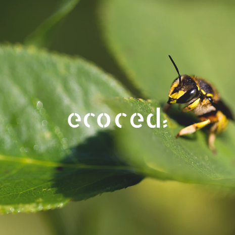 ECOCED