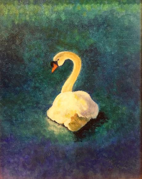 Swan Study 1