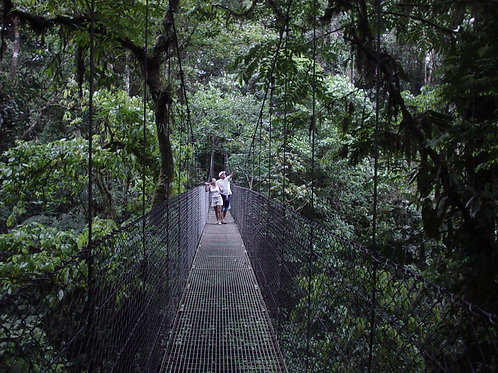 Hanging Bridges & Fortuna Waterfall with lunch