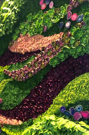 green wall.png
