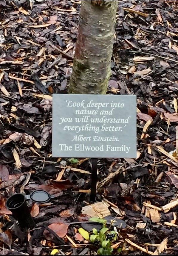 slate tree plaque