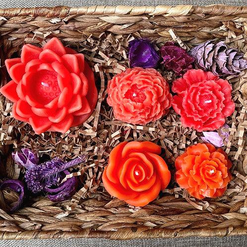 Flower fantasy (coral)