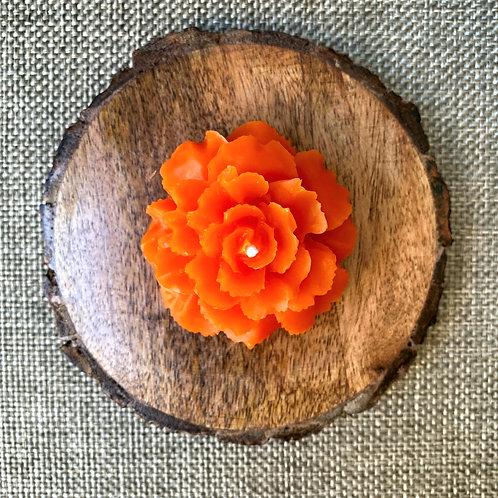 Flower (color options)
