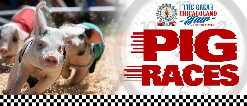 Pig Races Banner.jpeg