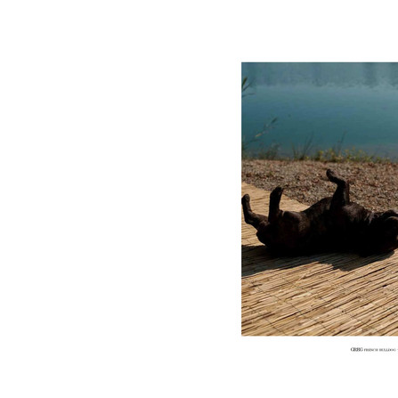 LOOKBOOK(trebarrabi)最新版-2-62.jpg