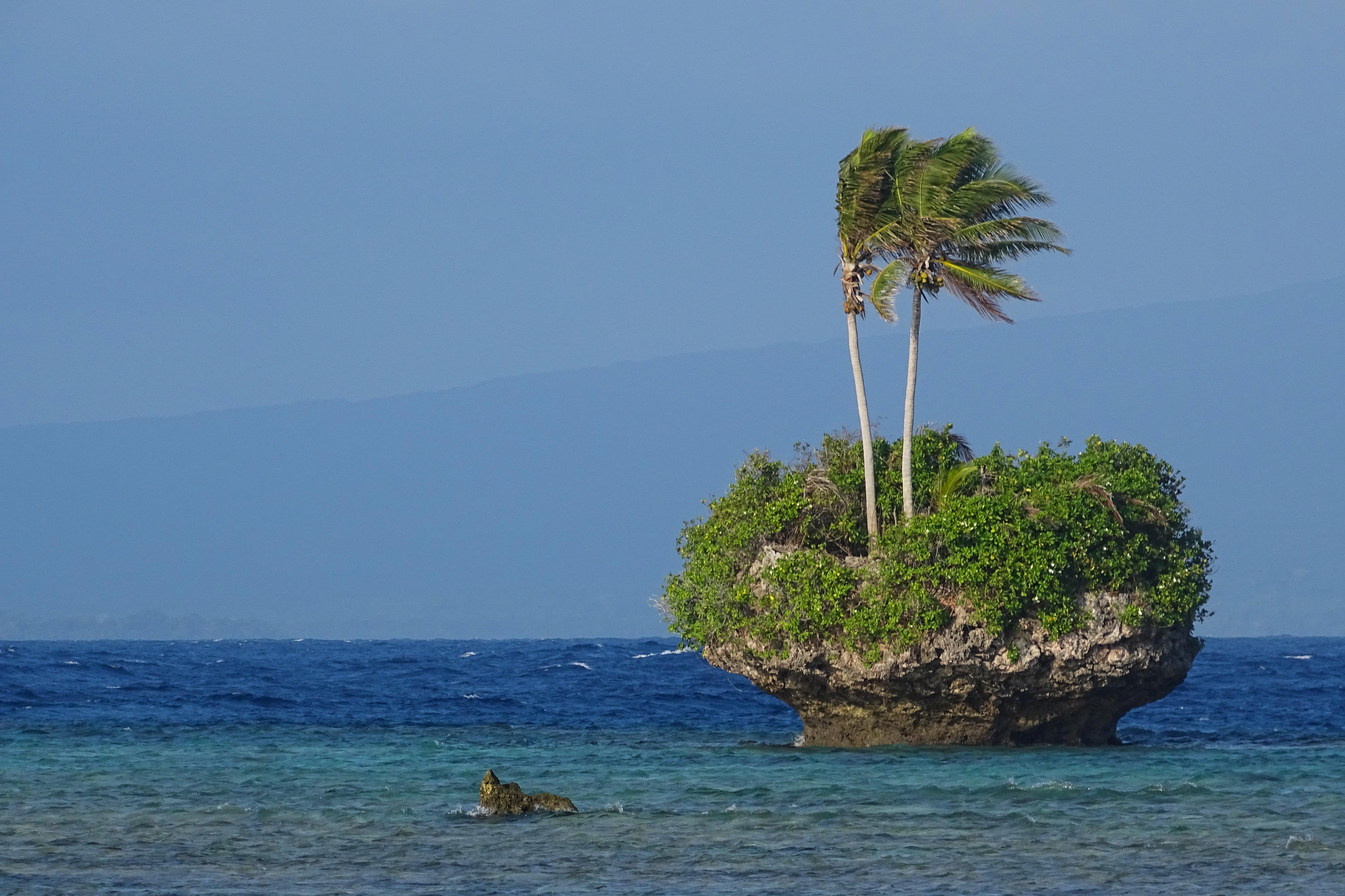 Rah Island - Palm Island