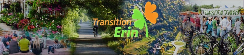 transition erin header.jpg