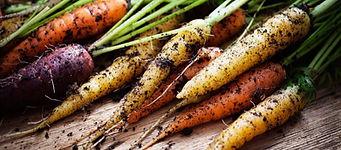 carrots!.jpg