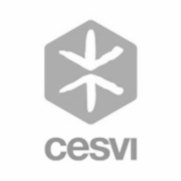 Cesvi_Profilo_edited.jpg