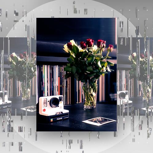 Print Collection 002 - Rose Petals
