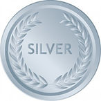 Quest4Success SILVER