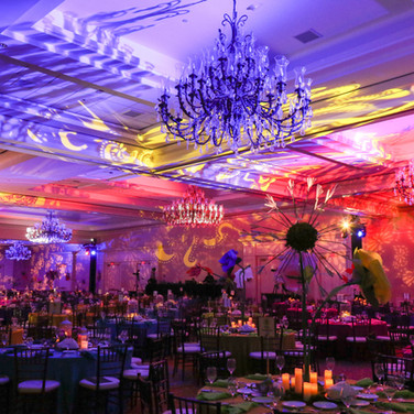 Gala Vibrant Color Lights