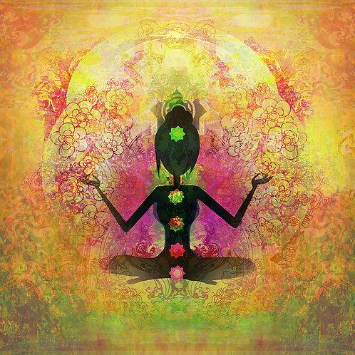 Atelier Chakras, énergie vitale et taux vibratoire