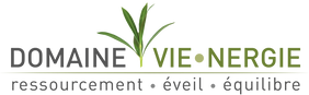 logo_domaine_vienergie fond trans.png