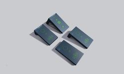 Myorangegreencard 53 1586x958