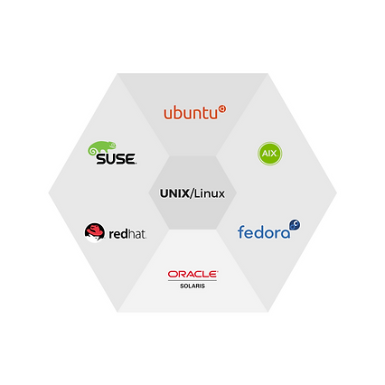 UNIX/Linux Operating Systems