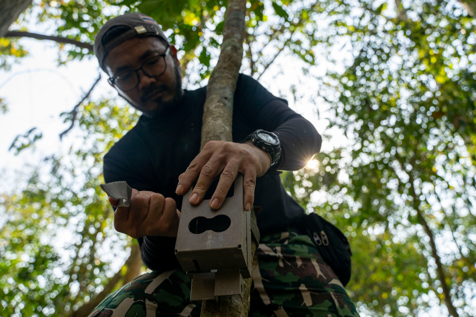 Wittaya Tueaktao prepares a camera trap along a trail commonly used by wildlife near the Khao Ban Dai research station in Huai Kha Khaeng. Camera trapping teams typically spend a month in the field, broken up into stretches lasting an average of 3-5 days at a time, followed by a week off.