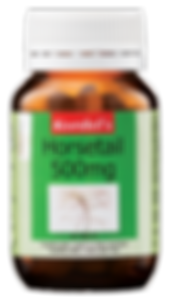 Kordel's Horsetail 500mg 60'S.png