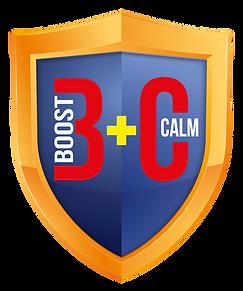 KD Boost+Calm Shield 2020 FA-02.png