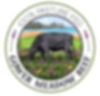 Gower-Meadow-Beef---logo_d200.jpg