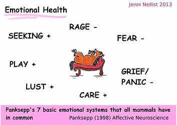 Jenni Nellist Animal Behaviourist, Equine / Horse and Dog Behaviourist South Wales Emotional Health