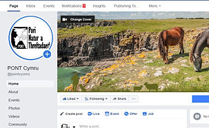 PONT Cymru Social Media Management by Ho