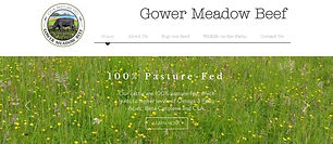 Gower Meadow Beef House Martin Media.jpg
