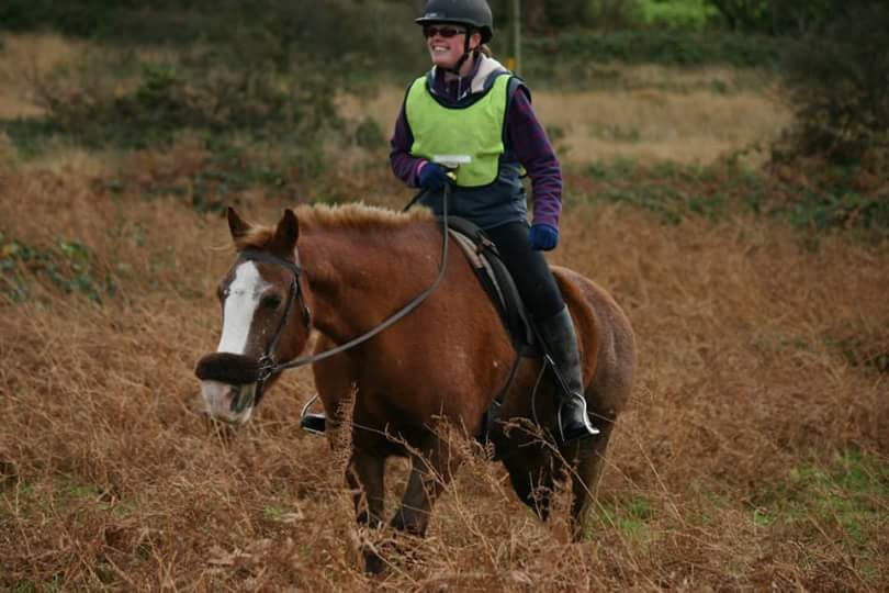 Jenni Nellist Animal Behaviourist Horses Translated Blog Hacking Stress