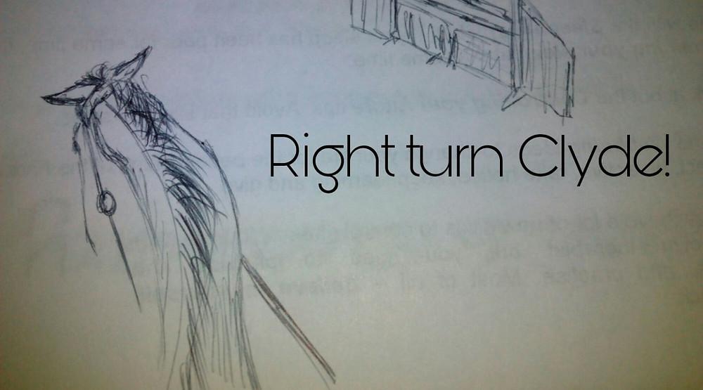 Jenni Nellist Animal Behaviourist Horses Translated Blog Right Turn Clyde!