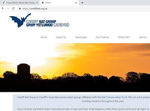 Cardiff Bat Group House Martin Media Web