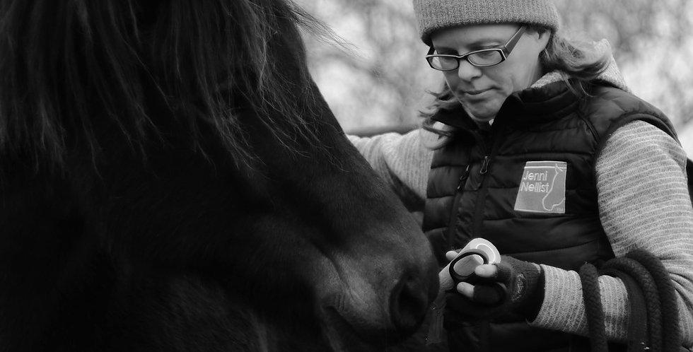 Initial Behavioural Consultation Equine Online