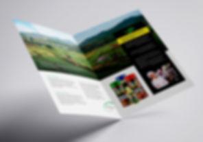 Prima Spices brochure,  HighSky Creative