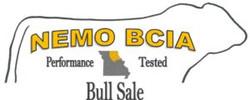 Bull-Sale-Logo-300x121