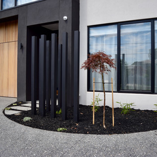 Front divisional privacy screen in front garden bed with black mulch