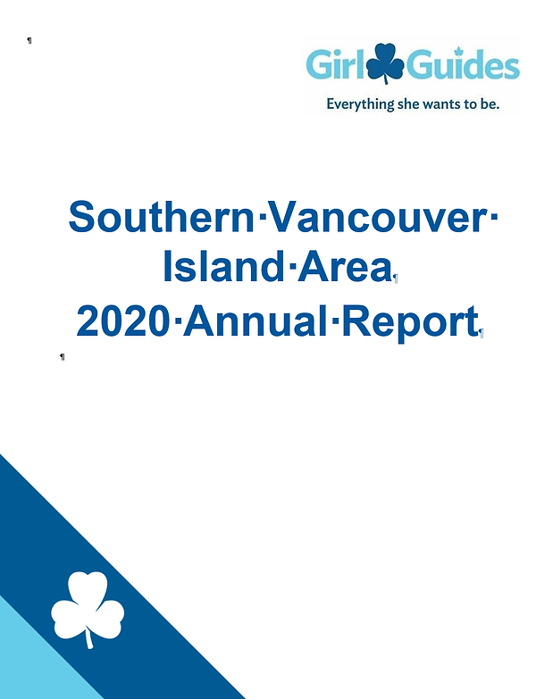 2020 Annual Report image.png