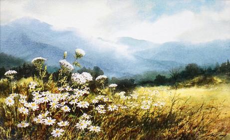Smoky Mountain Summer