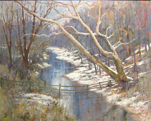 Winter Sycamores