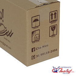 Caixa de papelão impressa frágil.jpg