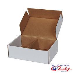 Caixa de papelão tipo correio com divisó