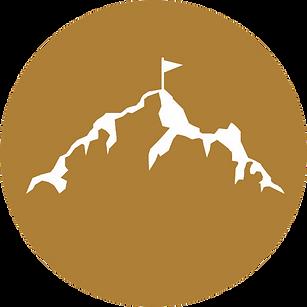 PPI_logo_Favicon 32 X 32.png