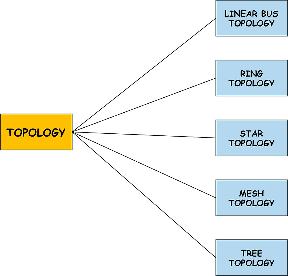 Computer Network Topologies include Linear Bus, Ring, star, Mesh, Tree