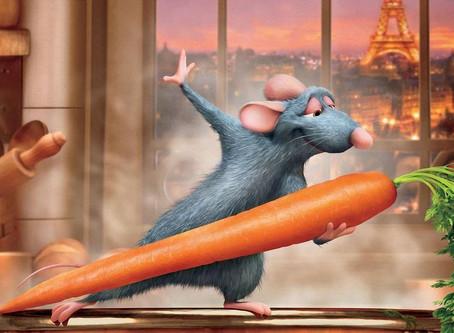学姐分享|留学生租房,发现老鼠怎么办?!