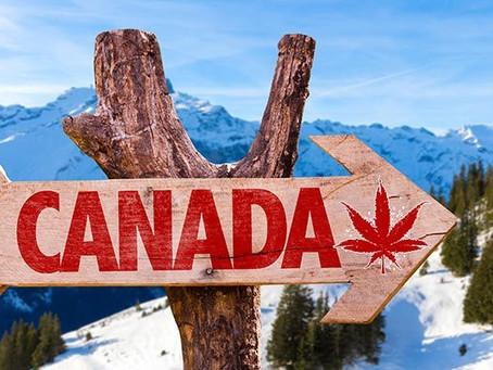 """留学生假期时间怎么玩?跟着学长学姐,提前""""云""""游加拿大!"""