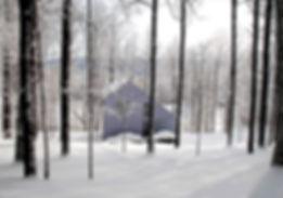 Pull winter.jpg