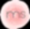 ms2_Prancheta 1.png