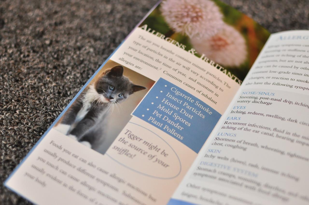 Allergy Brochure 3