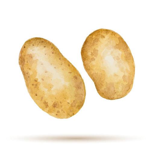 Potato (Big Bakers)