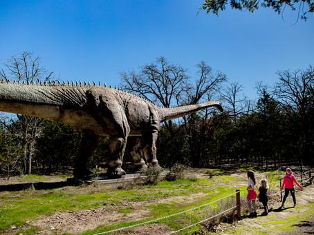 Dino-magic in our Own Backyard