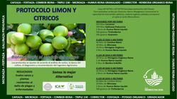 PROTOCOLO LIMON Y CITRICOS